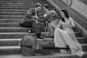 Brandenburg String Trio
